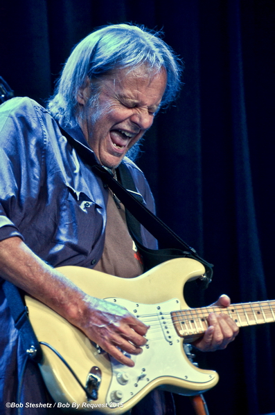 Walter Trout IS BACK 1 by Bob Steshetz_resize
